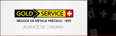 Gold Service Chauray (Image)